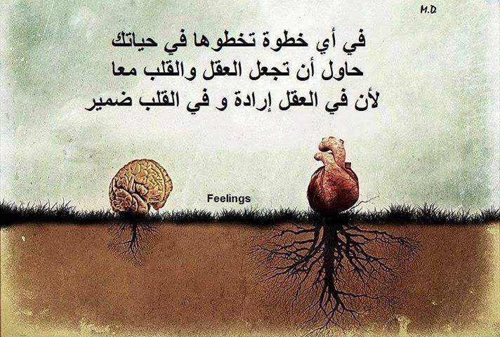 صورة حكمة رائعة , كلمات معبره وخواطر