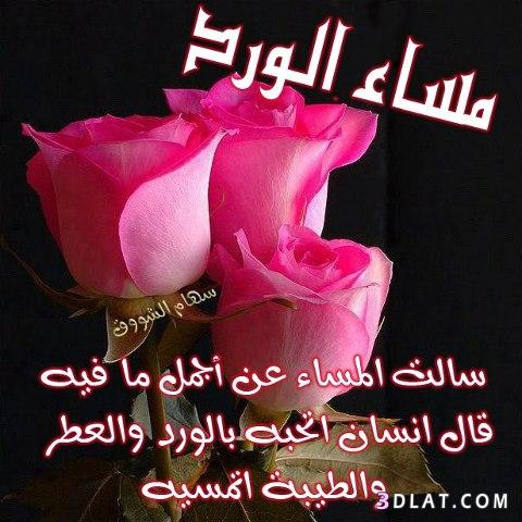 صورة مساء الخير مسجات , مساء الخير مسجات روعة