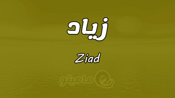 بالصور معنى اسم زياد , معانى وصفات الاسماء 2285 1