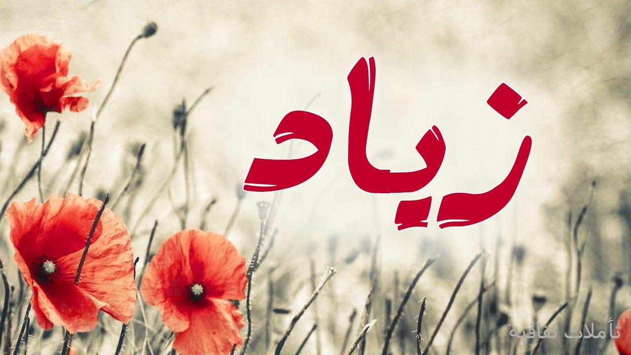 بالصور معنى اسم زياد , معانى وصفات الاسماء 2285