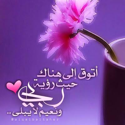 بالصور خلفيات واتس اب اسلاميه , اجمل صور اسلامية 2303 2