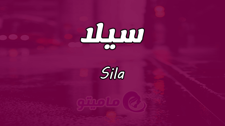 صور معنى اسم سيلا , صفات حامل اسم سيلا ومعناه