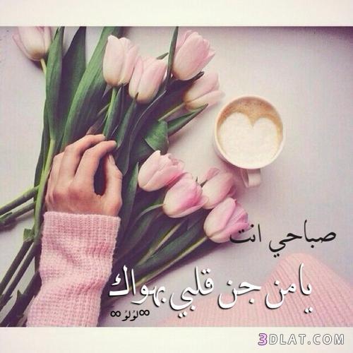 صور مسجات صباحية للحبيب , اجمل رسائل العشاق في الصباح