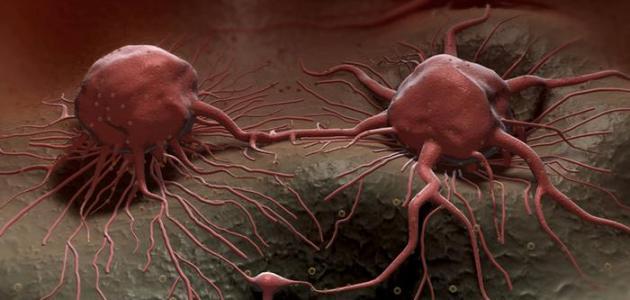 صورة علاج مرض السرطان , اشهر الطرق لمحاربه السرطان بالفواكة والخضار 4149 2
