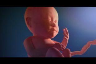 صورة كيف اعرف اني حامل ببنت , معرفة نوع الجنين