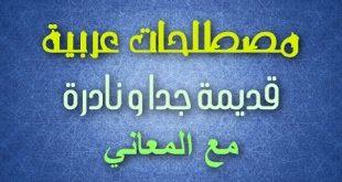 صوره معاني الكلمات العربية , قاموس المعاني