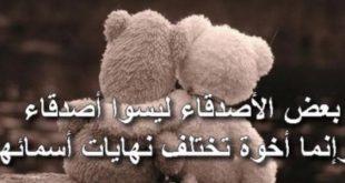 بالصور كلمات عن الصداقة , اجمل كلمات في الصداقة 1233 11 310x165