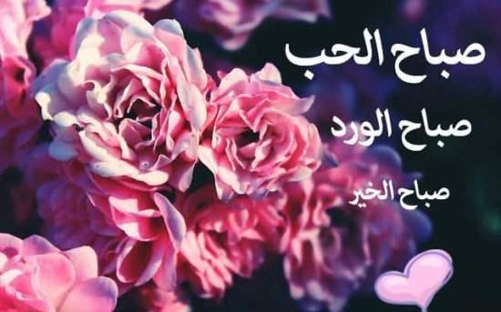 بالصور كلمات صباحية للحبيب , عبارات صباح الخير للحبيب 2273 6
