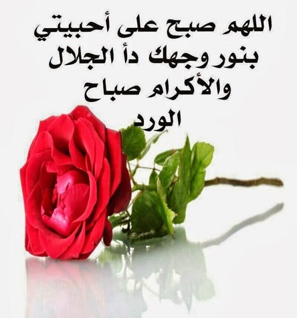 بالصور رسائل حب صباحية , صور صباح الحب 2407 3