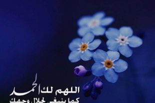 صوره صور عبارات جميلة , اجمل كلمات جديدة