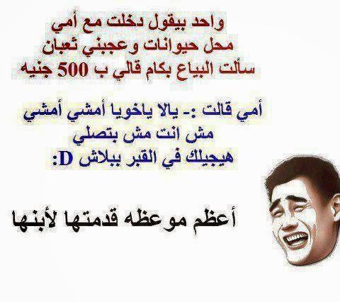 بالصور صور مضحكة جدا , اضحك من قلبك 2452 2