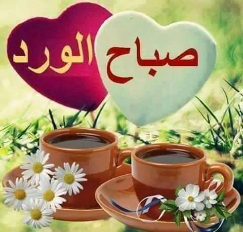 بالصور كلمات صباحية رائعة , صور صباح الخير 2484 9