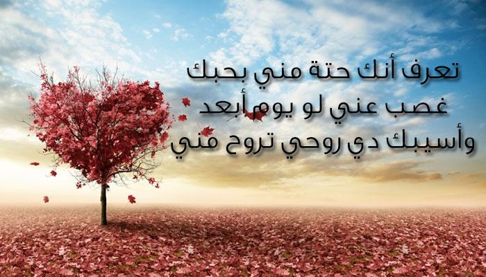 بالصور اشعار حب وغرام , كلمات حبيب عاشق 2573 6