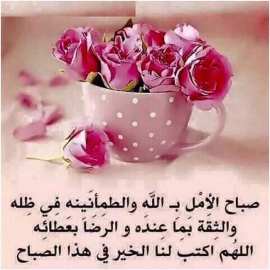 بالصور صور صباح الفل , عبارات صباح الخير 2667 10