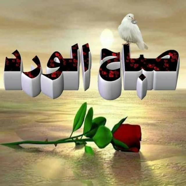 بالصور صور صباح الفل , عبارات صباح الخير 2667 5