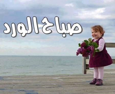 بالصور صور صباح الفل , عبارات صباح الخير 2667 7