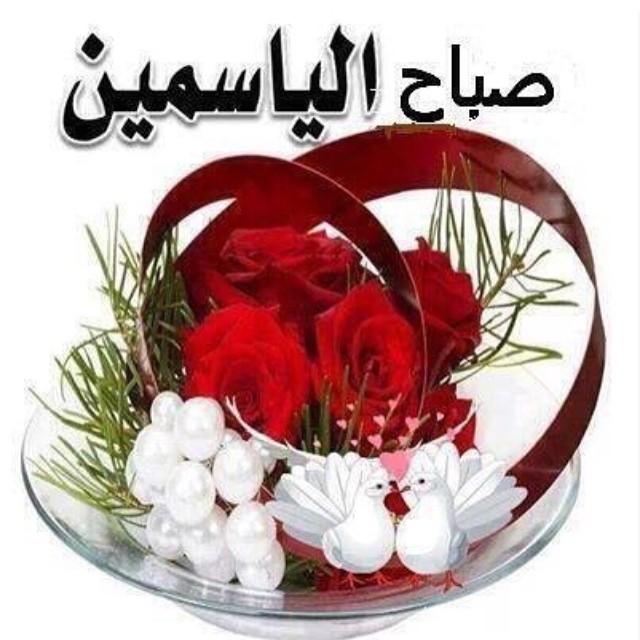 بالصور صور صباح الفل , عبارات صباح الخير 2667 8