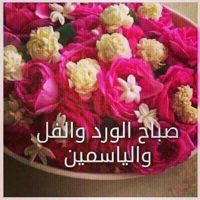 بالصور صور صباح الفل , عبارات صباح الخير 2667