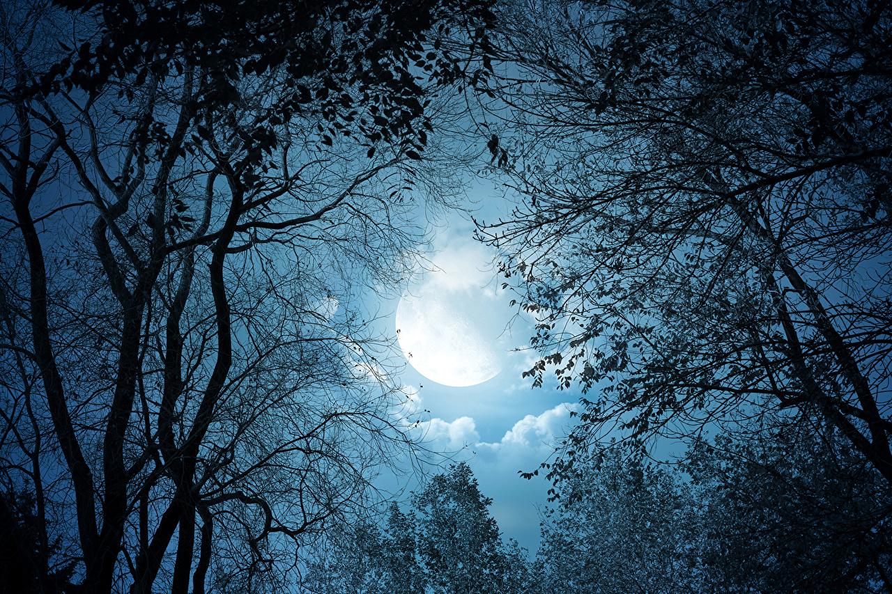 بالصور صور عن القمر , خلفيات ضوء القمر الساحرة 2679 3