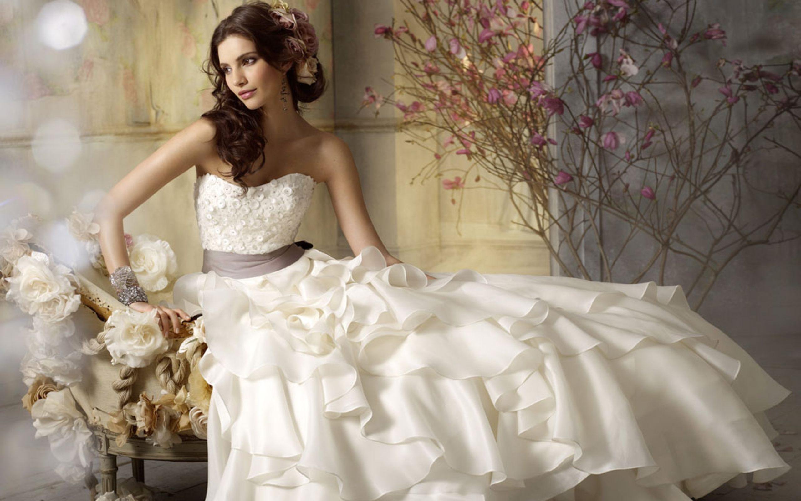 صورة صور عن العروس , بالصور البومات العرس من الاساسيات 3452 7