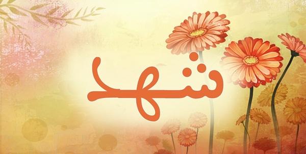 بالصور ما معنى اسم شهد , معانى اسماء شهد 632 1