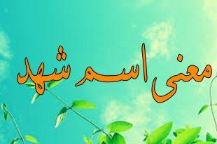 بالصور ما معنى اسم شهد , معانى اسماء شهد 632 3 310x205