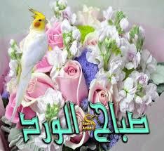بالصور صور صباح الخير جديدة , اجمل صور مكتوب عليها تحيه الصباح 3771 11