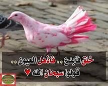 بالصور عبارات اسلاميه , اجمل وارق الكلمات والادعيه الاسلامية 3772 2