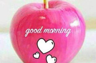 بالصور صور صباح الحب , اجمل صور مكتوب عليها صباح الحب 3783 10 310x205
