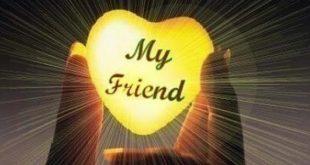 بالصور اجمل ما قيل عن الصداقة , اروع القصائد عن الصداقه ومشاعرها 3789 3 310x165