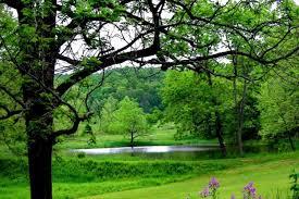 بالصور صور عن الطبيعه , اجمل صورة عن مناظر طبيعية 3799 9