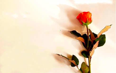 صورة صور للكتابه عليها , اجمل خلفية صورة يكتب عليها
