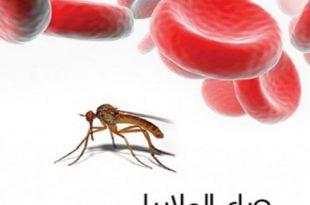 بالصور مرض الملاريا , ما هو مرض الملاريا واعراضه 3860 3 310x205