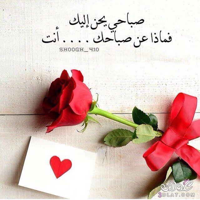 بالصور صور حب صباح الخير , الخير والحب لاهل الخير 3906 11