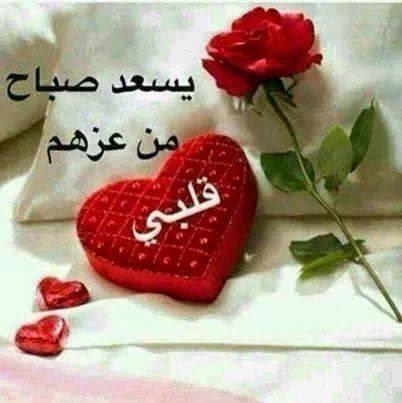 بالصور صور حب صباح الخير , الخير والحب لاهل الخير 3906 8