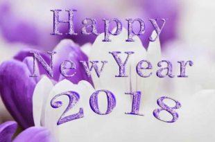 صوره صور للعام الجديد , كلمات رقيقة بمناسبة العام الجديد