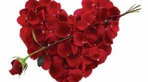 صوره متى عيد الحب , الميعاد الذي يحتفل فيه المحبين بالحب