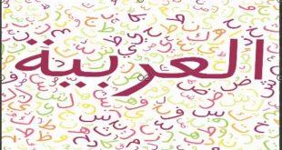 صورة معلومات عن اللغه العربيه , ما لا تعرفه عن اللغة العربية
