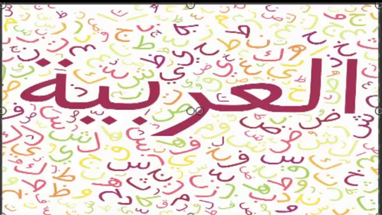 صور معلومات عن اللغه العربيه , ما لا تعرفه عن اللغة العربية