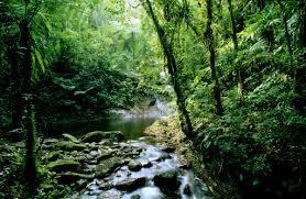 بالصور صور مناظر جميله , صور اجمل مناظر طبيعية 4014 11
