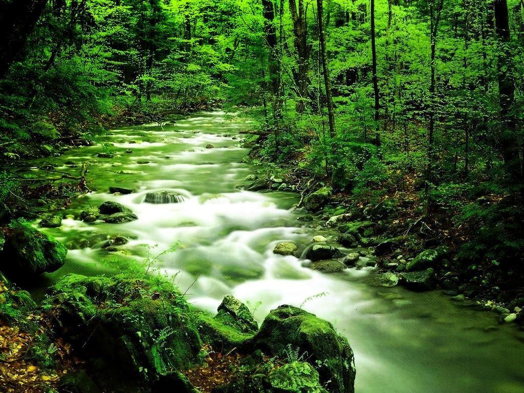 بالصور صور مناظر جميله , صور اجمل مناظر طبيعية 4014 8