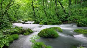 بالصور صور مناظر جميله , صور اجمل مناظر طبيعية 4014 9