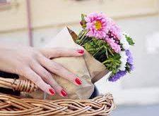بالصور خلفيات عروس , اجمل خلفية للواتس عن العرائس 4070 13 225x165