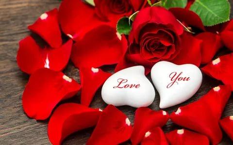 صور زهور الحب , اشتري ورد من اجل الحب