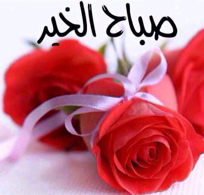 بالصور صور صباح الخير حبيبي , اجمل صور صباح الرومانسية 4225 27