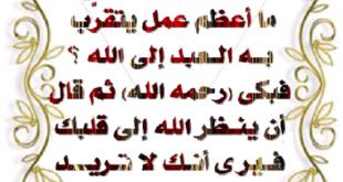 بالصور اجمل ما قيل في رحمة الله , يارب الرحمة من عندك 14271 11.jpg 310x165