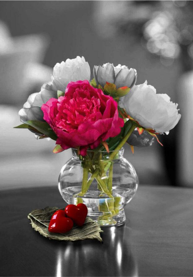 صور صور زهور رائعة , احلى صور الزهور
