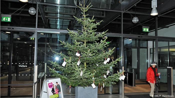 صور تزيين شجرة الكريسماس , شكال مختلفة لشجرة الكريسماس