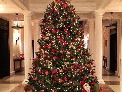 بالصور تزيين شجرة الكريسماس , شكال مختلفة لشجرة الكريسماس 14607 11