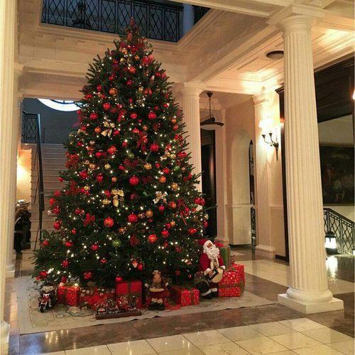 بالصور تزيين شجرة الكريسماس , شكال مختلفة لشجرة الكريسماس 14607 4